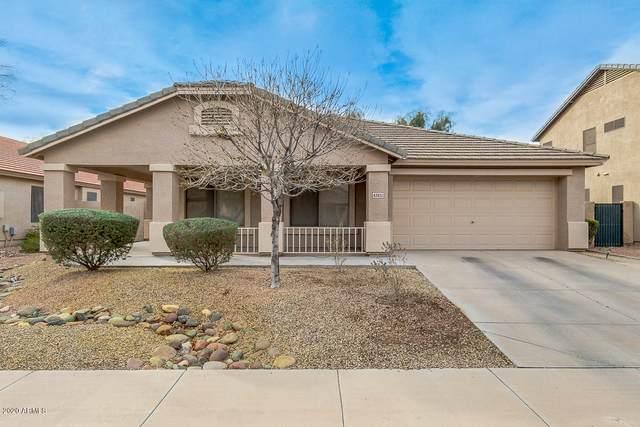 42451 W Chisholm Drive, Maricopa, AZ 85138 (MLS #6037069) :: Conway Real Estate