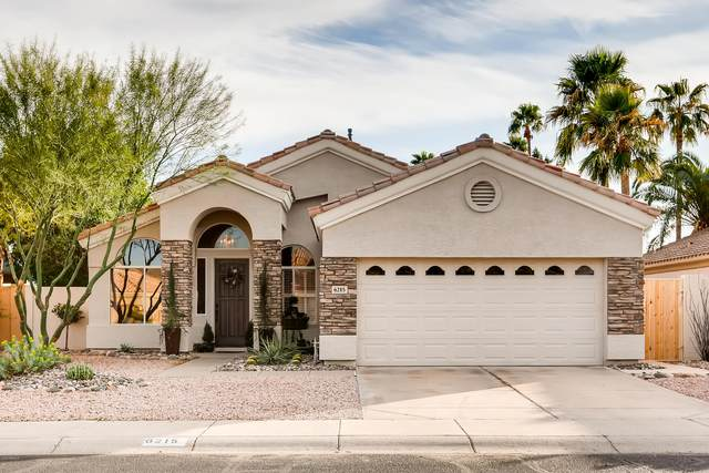 6215 W Irma Lane, Glendale, AZ 85308 (MLS #6037109) :: The Laughton Team