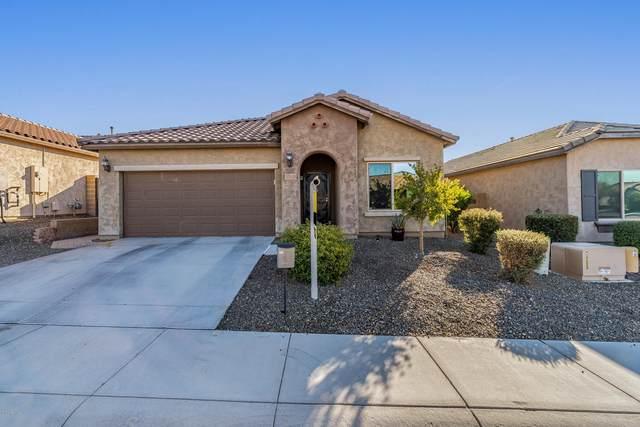 27233 N 16TH Lane, Phoenix, AZ 85085 (MLS #6037167) :: Yost Realty Group at RE/MAX Casa Grande