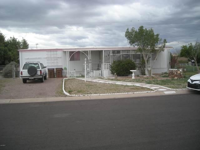 359 S Copper Drive, Apache Junction, AZ 85120 (MLS #6037177) :: CC & Co. Real Estate Team