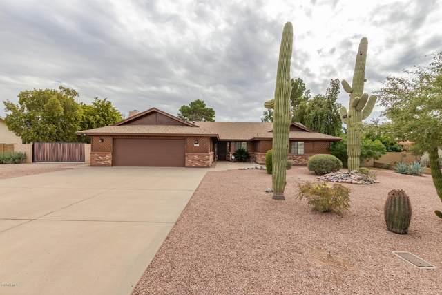 7649 E Euclid Avenue, Mesa, AZ 85208 (MLS #6037182) :: Homehelper Consultants