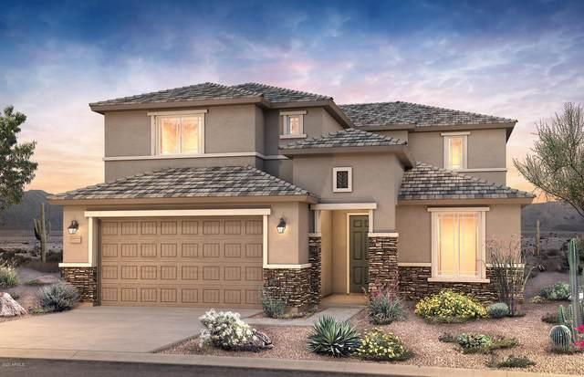 25833 N 161st Drive, Surprise, AZ 85387 (MLS #6037193) :: Sheli Stoddart Team | M.A.Z. Realty Professionals