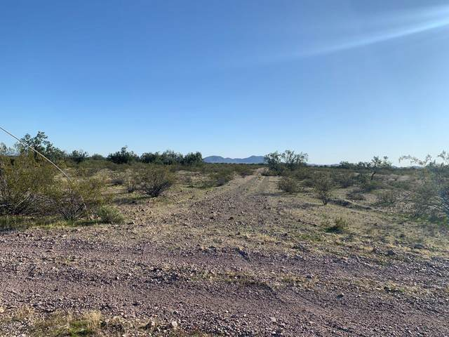 0 Northern Ave, Tonopah, AZ 85354 (MLS #6037221) :: Riddle Realty Group - Keller Williams Arizona Realty