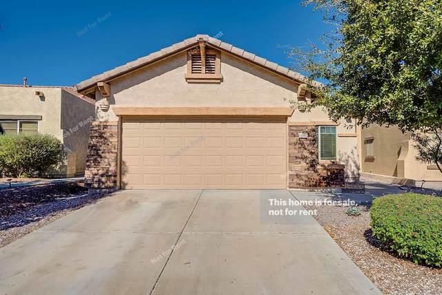 10982 E Secret Mine Court, Gold Canyon, AZ 85118 (MLS #6037223) :: The Kenny Klaus Team