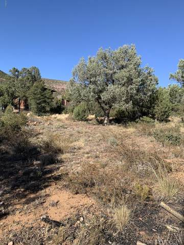 115 116 N Beaver Valley Est#2 Road, Payson, AZ 85541 (MLS #6037237) :: Riddle Realty Group - Keller Williams Arizona Realty