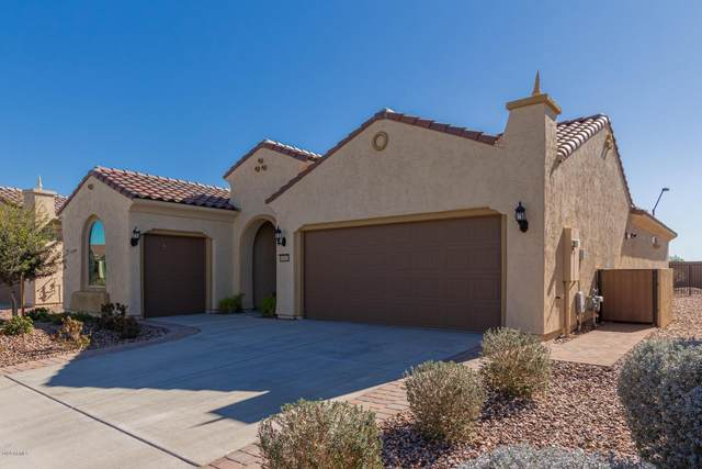 5597 W Cinder Brook Way, Florence, AZ 85132 (MLS #6037336) :: The W Group