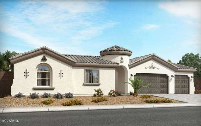 21558 E Russet Road, Queen Creek, AZ 85142 (MLS #6037354) :: Scott Gaertner Group