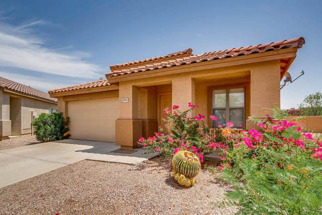 29011 N 51ST Place, Cave Creek, AZ 85331 (MLS #6037389) :: RE/MAX Desert Showcase