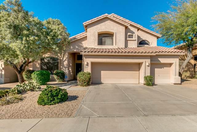 16642 N 51ST Street, Scottsdale, AZ 85254 (MLS #6037406) :: Revelation Real Estate