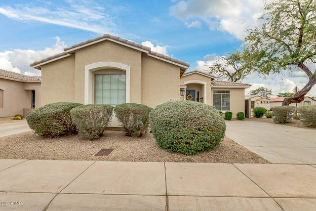 151 W Beechnut Place, Chandler, AZ 85248 (MLS #6037429) :: Riddle Realty Group - Keller Williams Arizona Realty