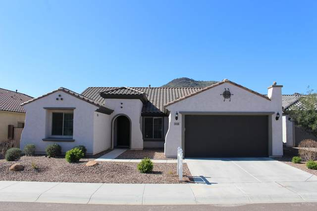 26136 N 52ND Lane, Phoenix, AZ 85083 (MLS #6037465) :: Conway Real Estate
