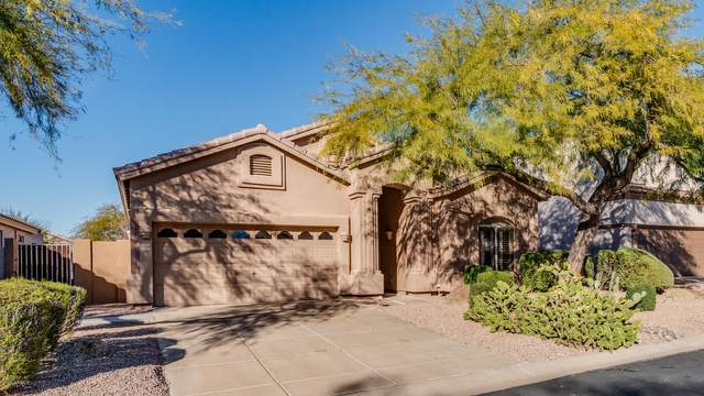 3055 N Red Mountain Street #129, Mesa, AZ 85207 (MLS #6037490) :: Revelation Real Estate