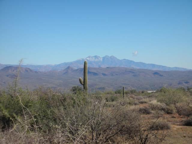 28800 N 165th Place, Scottsdale, AZ 85262 (MLS #6037500) :: Brett Tanner Home Selling Team