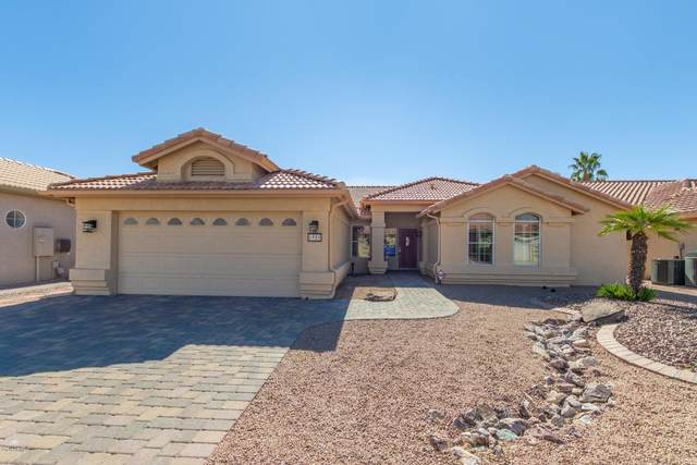 8905 E Coopers Hawk Court, Sun Lakes, AZ 85248 (MLS #6037503) :: The Andersen Group