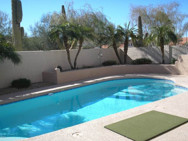 2515 E Goldenrod Street, Phoenix, AZ 85048 (MLS #6037507) :: RE/MAX Excalibur
