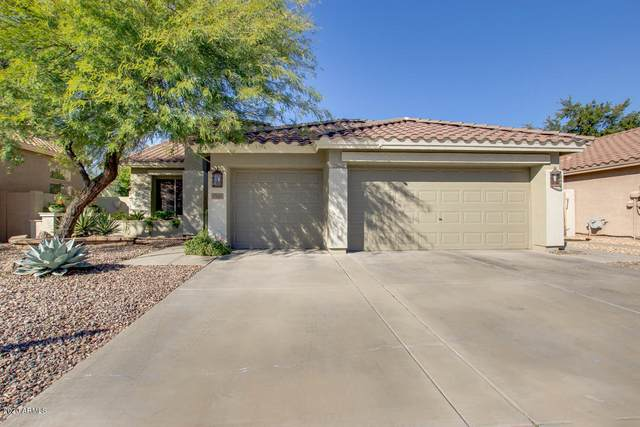 17426 N 54TH Lane, Glendale, AZ 85308 (MLS #6037516) :: Yost Realty Group at RE/MAX Casa Grande