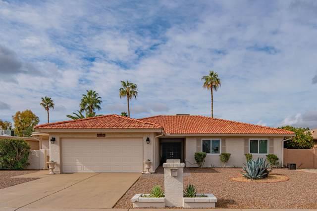 26014 S Beech Creek Drive, Sun Lakes, AZ 85248 (MLS #6037521) :: The Laughton Team