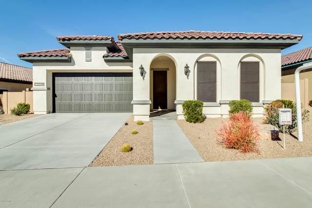 12028 S 183RD Drive, Goodyear, AZ 85338 (MLS #6037541) :: Nate Martinez Team