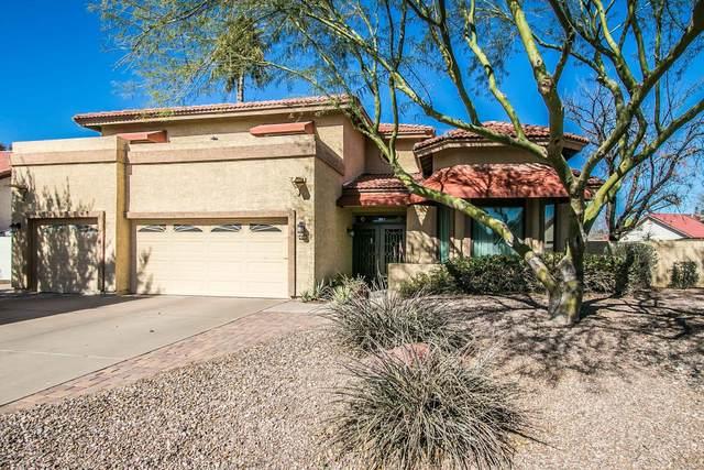 4166 W Orchid Lane, Chandler, AZ 85226 (MLS #6037571) :: Revelation Real Estate