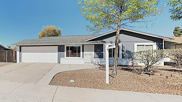 3628 W Oakland Street, Chandler, AZ 85226 (MLS #6037578) :: Revelation Real Estate