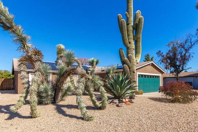 2520 E Corrine Drive, Phoenix, AZ 85032 (MLS #6037635) :: Brett Tanner Home Selling Team