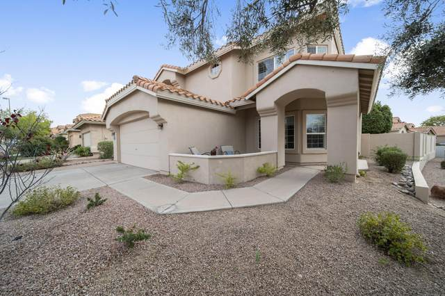 6427 E Raftriver Street, Mesa, AZ 85215 (MLS #6037652) :: Revelation Real Estate
