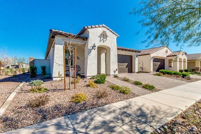 5621 S Colt, Mesa, AZ 85212 (MLS #6037682) :: The Property Partners at eXp Realty
