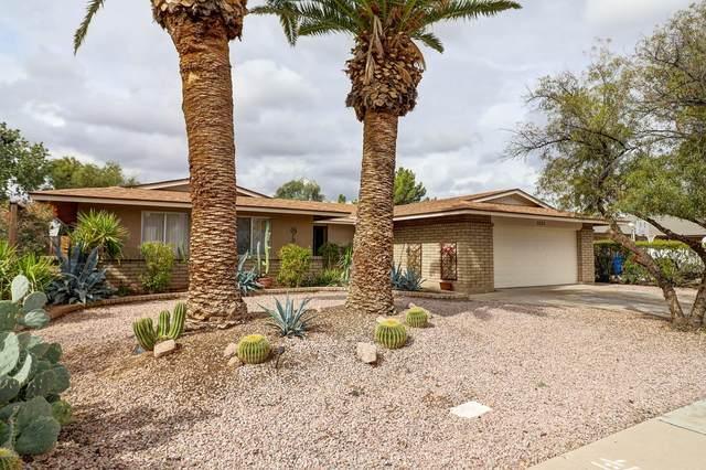 3052 S Saguaro, Mesa, AZ 85202 (MLS #6037697) :: Lux Home Group at  Keller Williams Realty Phoenix