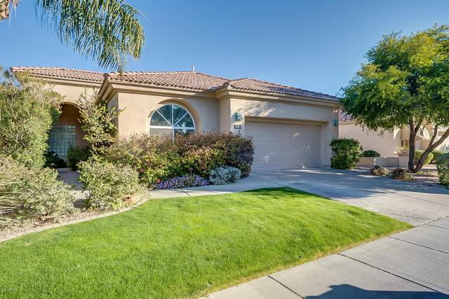 11882 E Del Timbre Drive, Scottsdale, AZ 85259 (MLS #6037698) :: Conway Real Estate