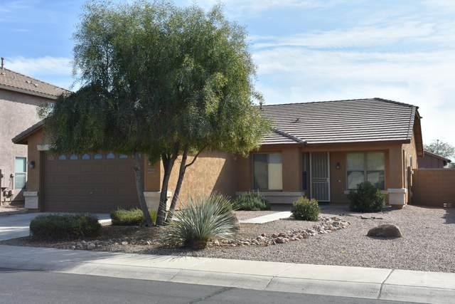 45653 W Meadows Lane, Maricopa, AZ 85139 (MLS #6037704) :: Revelation Real Estate
