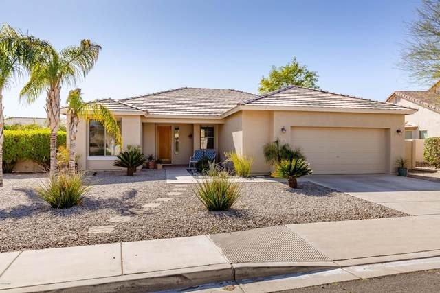 2861 E Lindrick Drive, Chandler, AZ 85249 (MLS #6037726) :: The Kenny Klaus Team