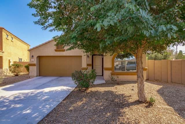 7251 W Cactus Wren Drive, Glendale, AZ 85303 (MLS #6037728) :: Lifestyle Partners Team