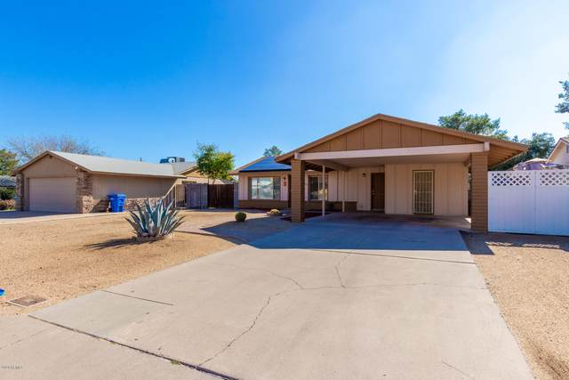 2605 E Dahlia Drive, Phoenix, AZ 85032 (MLS #6037763) :: Brett Tanner Home Selling Team