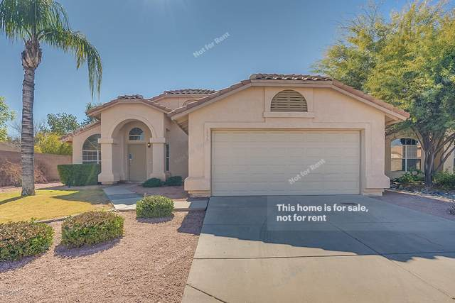 1333 W Cindy Street, Chandler, AZ 85224 (MLS #6037816) :: Lifestyle Partners Team