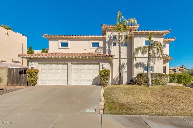 1736 E Gelding Drive, Phoenix, AZ 85022 (MLS #6037844) :: Brett Tanner Home Selling Team