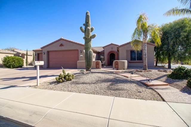 20923 N Carrillo Trail, Surprise, AZ 85387 (MLS #6037847) :: REMAX Professionals