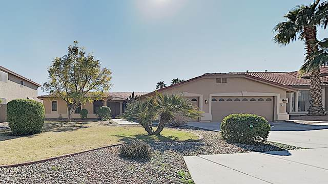 13527 W Colter Street, Litchfield Park, AZ 85340 (MLS #6037857) :: Conway Real Estate