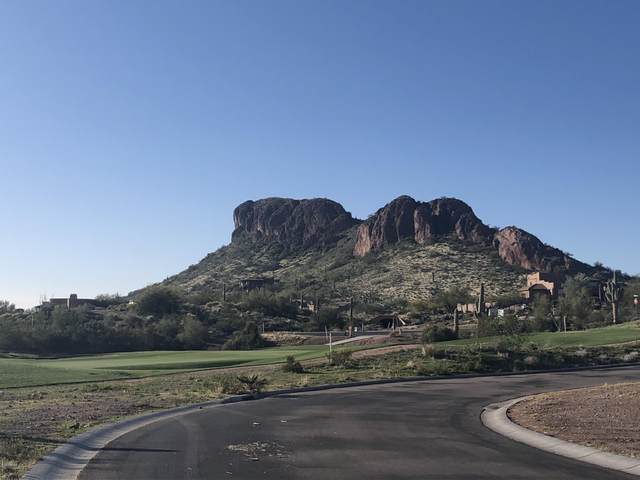 9611 E Tee Box Court, Gold Canyon, AZ 85118 (MLS #6037865) :: The Bill and Cindy Flowers Team