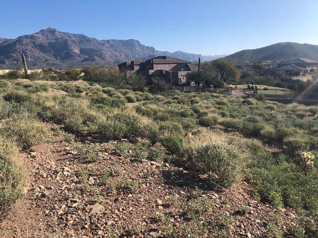 5231 S Gold Canyon Drive, Gold Canyon, AZ 85118 (MLS #6037948) :: Conway Real Estate