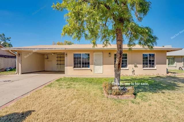 2058 W Camino Circle, Mesa, AZ 85201 (MLS #6037951) :: Lifestyle Partners Team