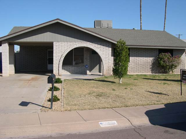 1321 S Polly Ann Drive, Tempe, AZ 85281 (MLS #6037999) :: Homehelper Consultants