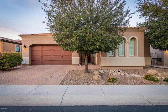 1224 E Sweet Citrus Drive, San Tan Valley, AZ 85140 (MLS #6038101) :: The Laughton Team