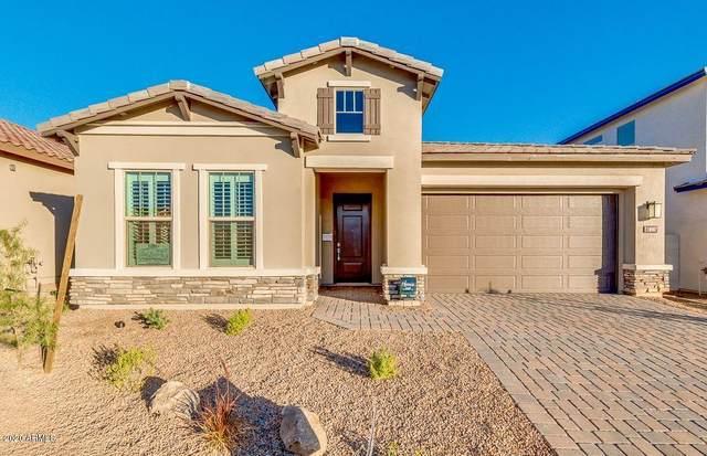 6525 E Libby Street, Phoenix, AZ 85054 (MLS #6038108) :: Lux Home Group at  Keller Williams Realty Phoenix