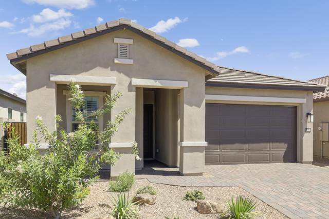 1935 W Plum Road, Phoenix, AZ 85083 (MLS #6038110) :: The Laughton Team