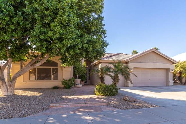 2912 N 113TH Avenue, Avondale, AZ 85392 (MLS #6038130) :: The Property Partners at eXp Realty