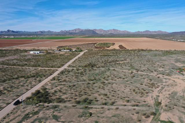0 N 381st Drive, Tonopah, AZ 85354 (MLS #6038139) :: The Kenny Klaus Team