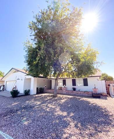 1507 E Julep Circle, Mesa, AZ 85203 (MLS #6038140) :: Power Realty Group Model Home Center