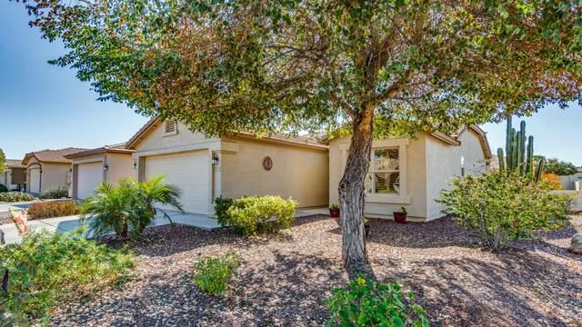 3789 E Hazeltine Way, Chandler, AZ 85249 (MLS #6038141) :: Keller Williams Realty Phoenix