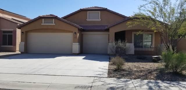 37245 W Giallo Lane, Maricopa, AZ 85138 (MLS #6038160) :: Revelation Real Estate