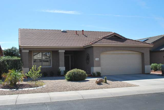 17609 W Babbitt Drive, Surprise, AZ 85374 (MLS #6038187) :: Homehelper Consultants